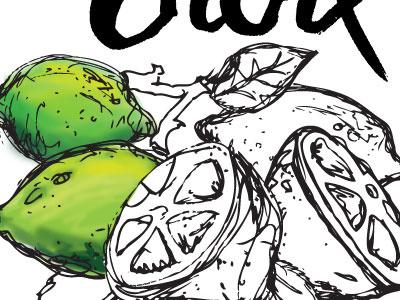 Limes WIP fruit illustration