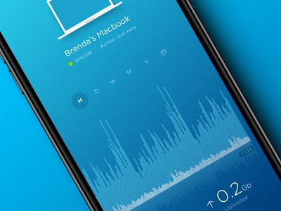 Router Manager Mobile App device management internet traffic network app network router management user interface ui design blue ui ux app iphone