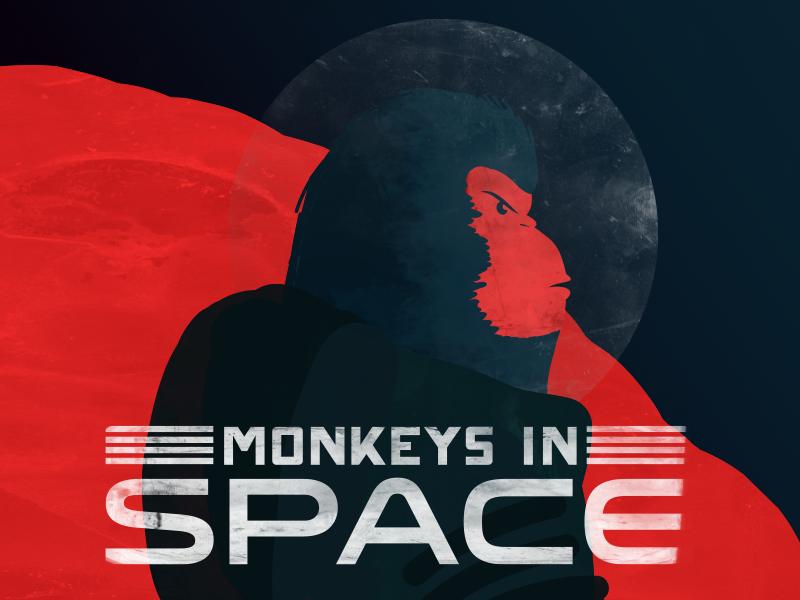 Monkeys in Space Illustration illustration textures monkey space