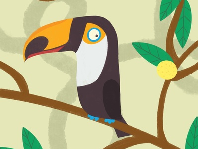 Toucan kidlitart toucan childrens book illustration