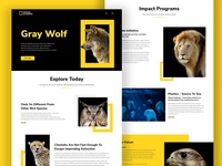 NatGeo Web Redesign