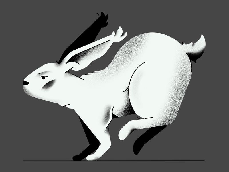 🐇🐇🐇 procreate brushes diseño vector conejo bunny procreate characterdesign illustrator design flat animation illustration