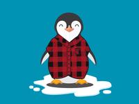 Penguin wearing flannel