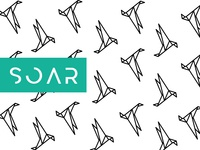 Soar - Pattern Design