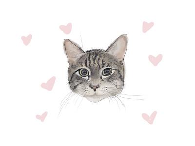 International Cat Day crazy cat lady pet love hearts illustration watercolor tabby kitten cat kitty
