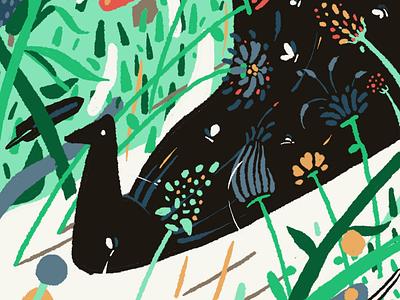 birds expressionism procreate colorful bird illustration birds