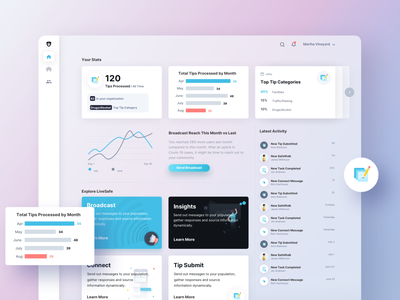 Security Dashboard Analytics enterprise dashboard community safety security branding app design ux ui
