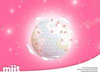 Miit around the world