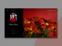 Portfolio - web