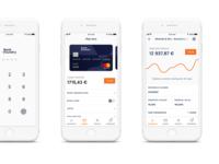Fintech whitelabel app concept