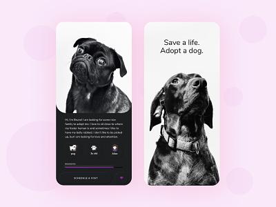 Dog Adopt App mobile app ui ux app uxui mobile ui uxdesign minimal design clean