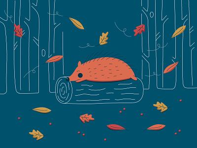 Hedgehog sleep woods leaves autumn palette colors illustration hedgehog