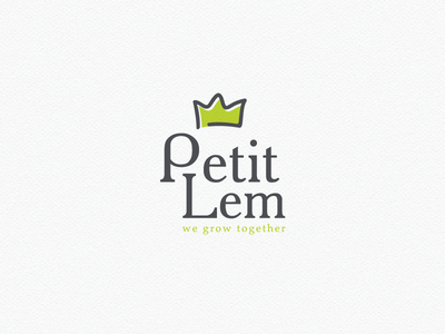 Logo design for Petit Lem Boutique little fashion baby crown shop clothing kids logo design
