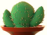 Cactus Modeling