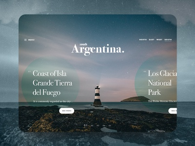 South Argentina Web Tourism Concept website web ux ui typography simple layout homepage form design clean argentina