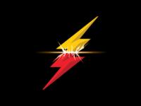 Flash Hsalf