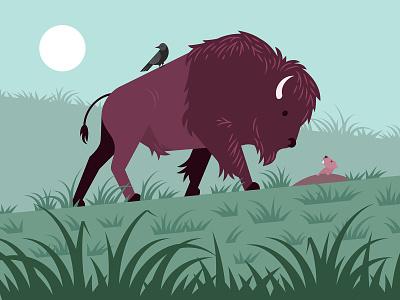 Buffalo wildlife grass prairie prairie dog buffalo illustration vector