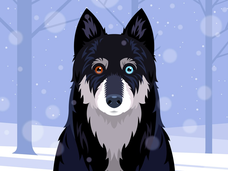 Mitzy winter woods snow vector portrait dog