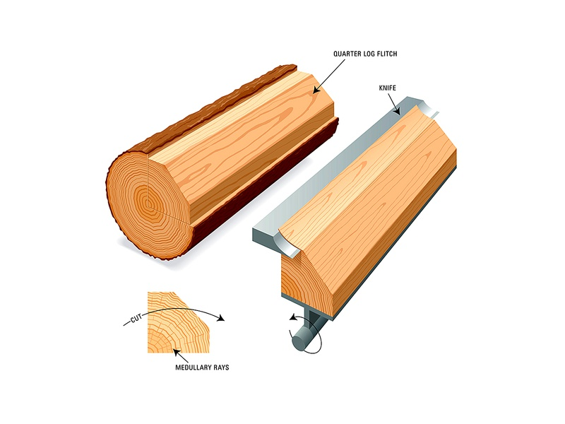 Veneer illustration sawmill educational vector technical wood