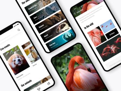 Zoo app