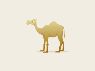 Camel illustration humpday animal gradient desert camels camel