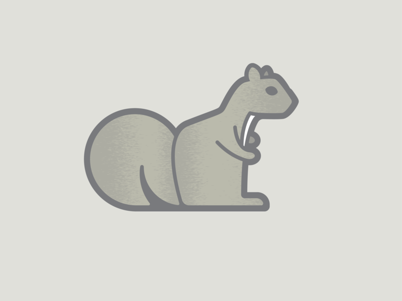 Squirrel outline illustration vector animal texture squirrel