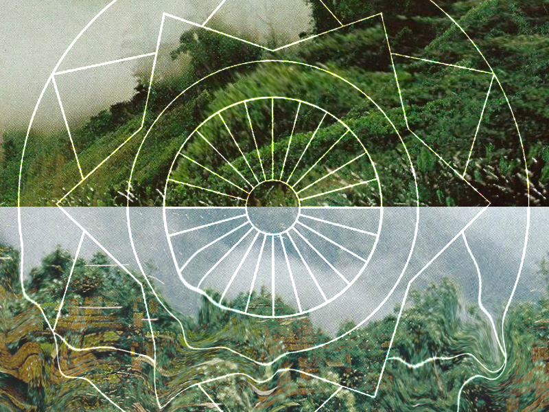 chercher la vie [experimental] experimental geometric trippy nat geo nature texture shapes crazy abstract