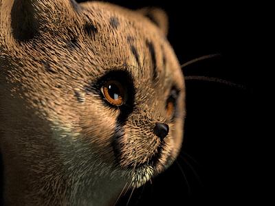 Cheetah woohoo character illustrazioni c4d 3d