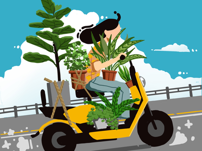 My plants procreate ipad 2d illustration