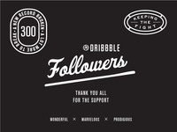 300 Followers