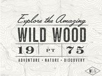 Wild Wood - Postcard
