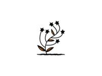 Star Flower Plant Logo