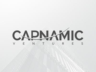 Capnamic Ventures logo venture capital