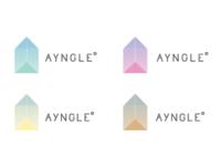Ayngle Identity System