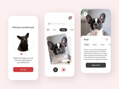 Pet Matching App 🐾 design android ios adobe xd colors clean ux app ui