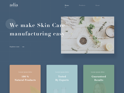 Adia Website Design - Skin Care cleanwebsite boldwebsite skincare product natural products sell products organice ecommerce ecommerce skin products colorful website beauty products skincare website