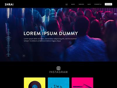 DJ Website Design dj party partywebsite dj night djparty website dj music web dark website music website