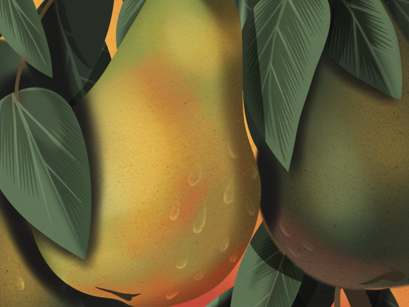 La Pera - The Pear folkart pera mexican mexico loteria madewithprocreate procreate digital illustration illustration fruits fruit pear
