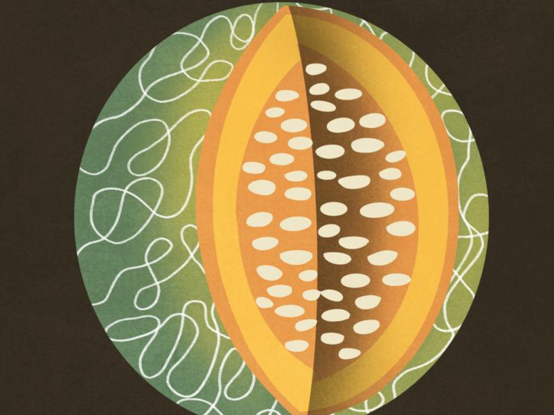 El Melón - The Melon mexican folk art folk game art card game digital art hand drawn drawing procreate bingo loteria food melon digital drawing illustration