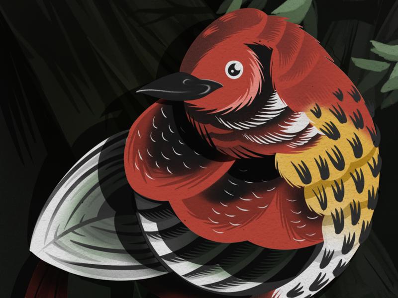 El Pájaro - The Bird nervousness ancy nervous procreate art procreate app procreate darkness night time nature game art folk art pajaro loteria hand drawn digital art audoban bird illustration bird