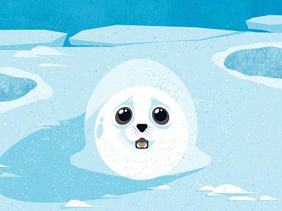 Cute Seal baby seal snow ice robbe cute seal cute seal wasser für alle createthelabel viva con aqua vivaconaqua