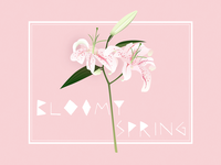 Bloomy Spring