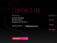 Bullseye Worldwide Web Site