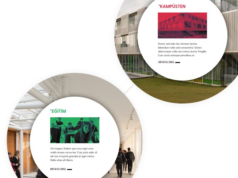 School Website school user interface website design
