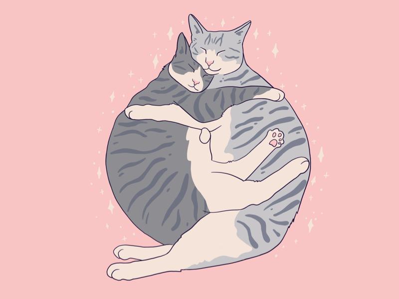 Love you procreate cute valentine love you pink cat illustration art