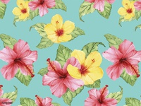 Flora Patterns: Hibiscus