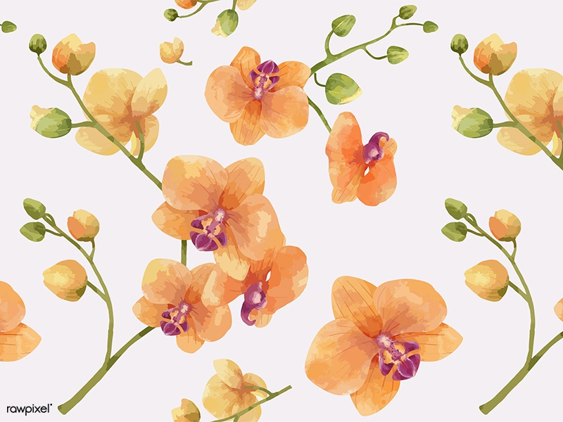Flora Patterns: Orchid orchid floral flora flower pattern design pattern watercolor graphic graphic design illustration vector design