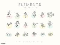Botanical Design Elements