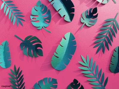 Tropical Paper Set summer colorful pattern leaf paper craft paper icons graphic design design