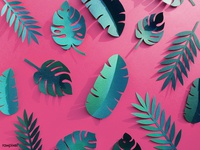Tropical Paper Set